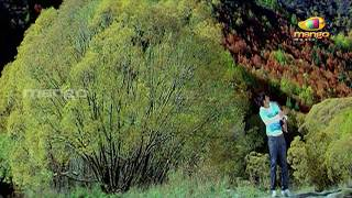 Sude Sude Video Song - Bujjigadu