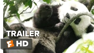 Born in China Official 'Earth Day' Trailer (2017) - Disneynature Documentary HD