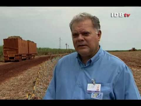 Inter-American Development Bank (IDB) sugarcane ethanol video