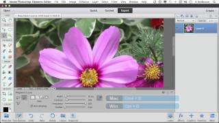 Photoshop Elements 11 Tutorial | The Magical Magnetic Lasso Tool