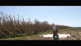 Looper - Trailer Ufficiale Italiano | HD