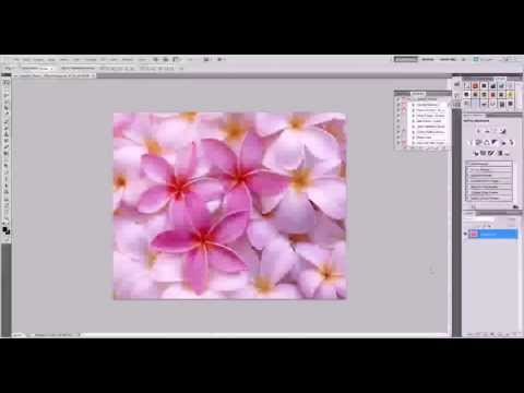 ColorSplash Effects Photoshop  Hindi Tutorial