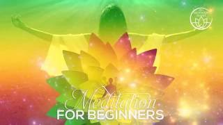 Meditation for Beginners - Explore New Dimension of Harmony