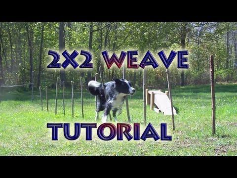 Agility Training Tutorial - Weave Poles (2X2 Poles Method)