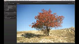 Lens Corrections Tool in Capture One Pro 7 | Phase One