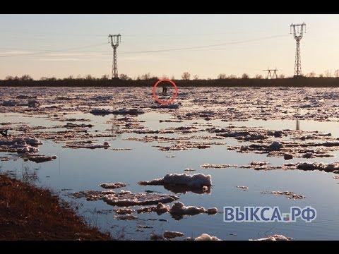 С дрейфующей льдины в Досчатом спасли двух мальчиков