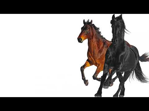 Lil Nas X – Old Town Road feat. Billy Ray Cyrus Remix