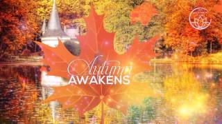 Autumn Vipassana - Insight Meditation