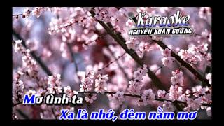 Hoang mang remix karaoke ( dual )