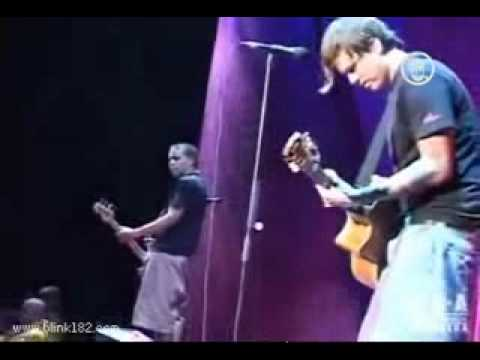 Blink-182 - What Went Wrong (Live)