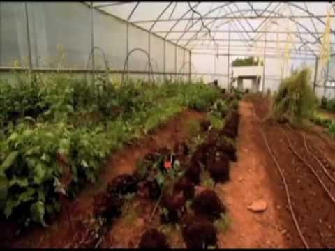 Agricultura biológica - Biosfera parte 2 de 3