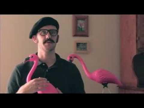 The Pink Plastic Flamingo: Ambassador of the American Lawn