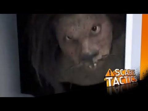 Rat Monster Scare Tactics Episodes