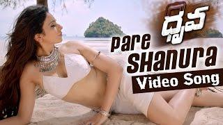 Pareshanuraa Video Song Promo -  Dhruva
