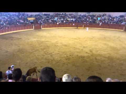 Concurso de recortes Guadalajara 2012