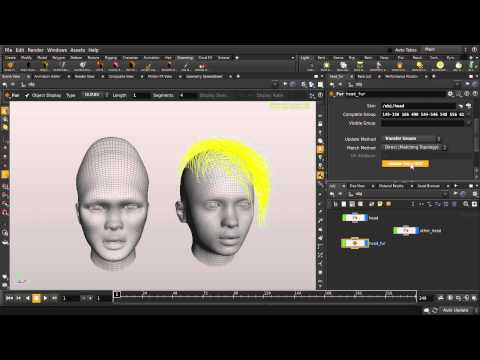 Houdini | Hair Transfer