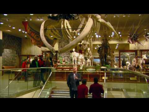 Arts Digest | Segment | Milwaukee Public Museum