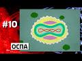 Фрагмент с конца видео 10 УЖАСНЫХ ЭПИДЕМИЙ
