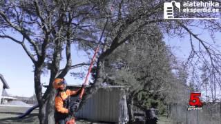 ECHO Kõrglõikuriga saab oksi lõigata isegi 5m kõrguselt