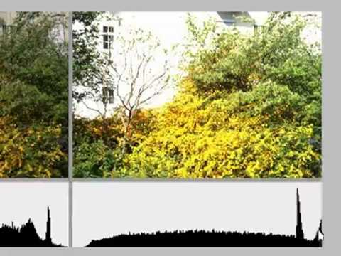Photography Tutorials - Control Exposure with the Histogram