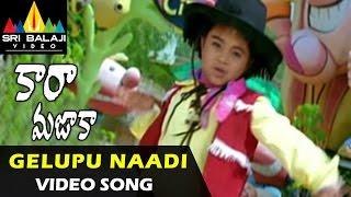 Gelupu Naadi Gajala Video Song - Cara Majaka