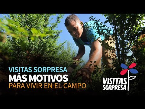 Visita sorpresa del Gobierno de Danilo Medina