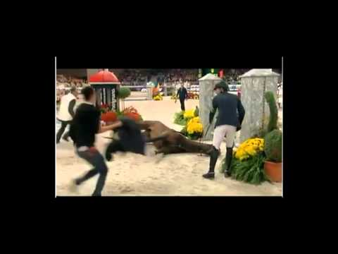 2011-11-06 Sir Hickstead Olympic Showjumper  died in Verona.