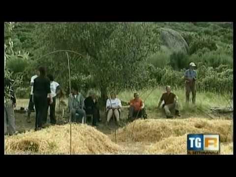 Orto Sinergico al VillaggioCarovana - servizio di Rai3 Regione del 12 maggio 2012