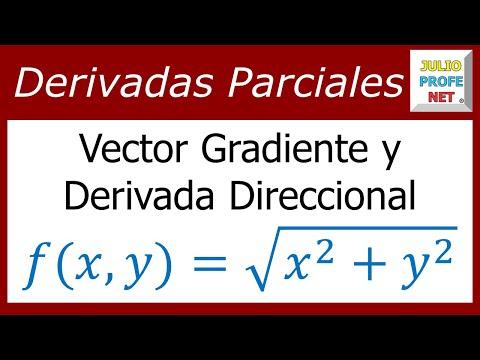 Vector Gradiente y Derivada Direccional