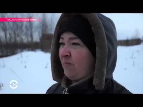 Многодетные семьи Выксы борются за полагающиеся им земельные участки