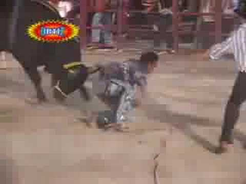 Jaripeo Paredes De Temilpa Vs. El Playstation