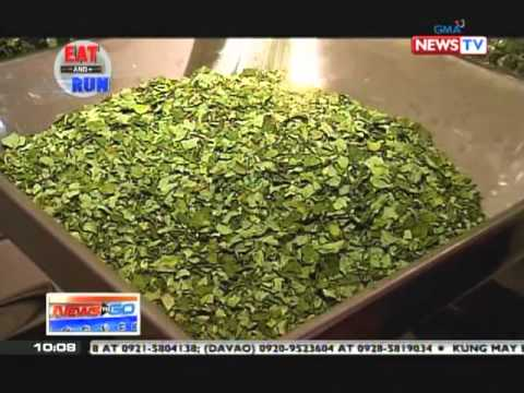 News to Go - The health benefits of malunggay on Eat and Go 3/16/11