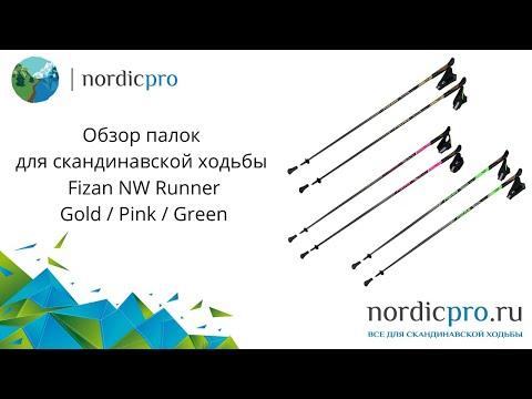 Fizan NW Runner Gold / Палки для скандинавской ходьбы