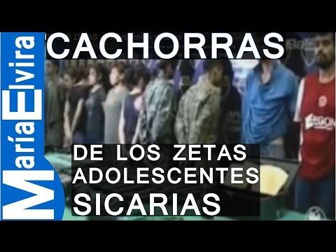 LAS CACHORRAS DE LOS ZETAS.