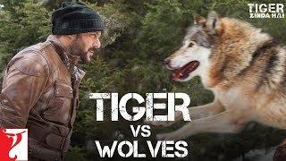 Tiger Zinda Hai Promo - Tiger vs Wolves