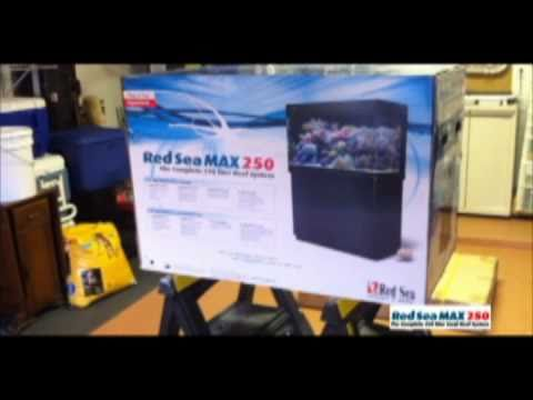 Red Sea Max 250 (2) Setup #1
