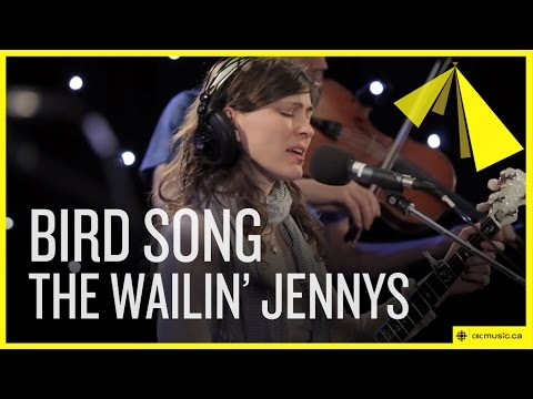 'Bird Song' by The Wailin' Jennys