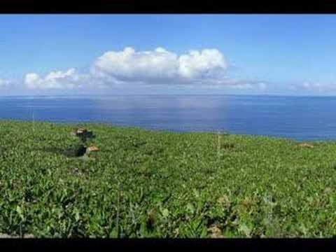 La Palma, la isla bonita.