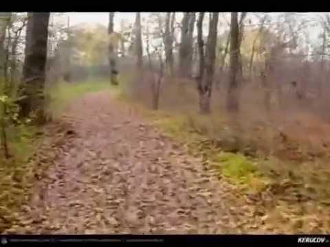 VIDEOCLIP Traseu MTB Sarulesti - Magureni - Vadu Anei - Cernica - Padurea Pantelimon