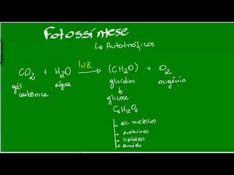 Fotossíntese - Aula I