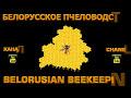 Фрагмент с начала видео БАКФАСТ и КАРНИКА весенние расширение пчелосемей вощиной