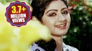 Naa Kallu Chebuthunnayi Song - Premabhishekam