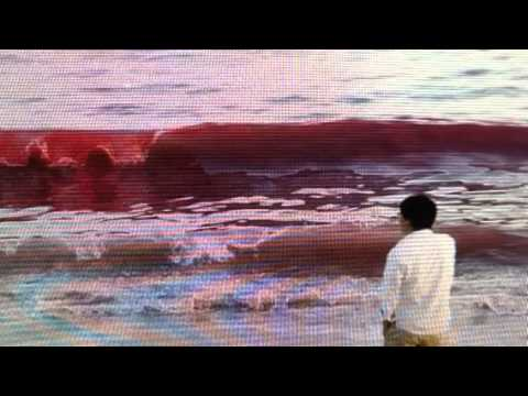 """""""Panic"""" In China As Water Turns """"Blood Red"""" In The Sea"""