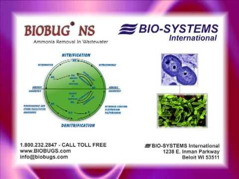 Nitrification | Denitrification : BIOBUG NS