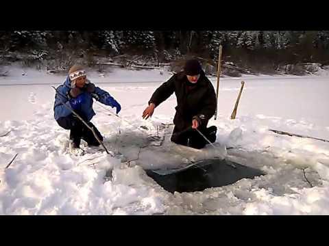 рыбалка на судака на томи