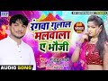 Bhojpuri Holi Song 2020 | रंगवा गुलाल मालवाला ए भौजी | Guddu Yadav | Superhit Holi Songs 2020 New