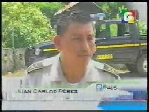 Noticiero Guatevisión, Deforestación en El Estor