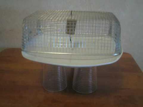 esperimenti scienze gabbia di faraday (Silvia G.)