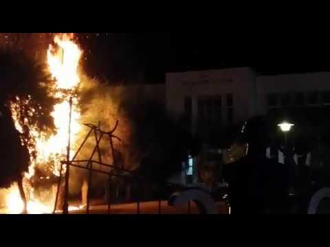 Aguiluchos prenden fuego a árboles por derrota