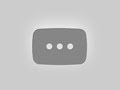 Natural Whitetail Deer Buck Up Close + Slow Motion Running (1080p HD)